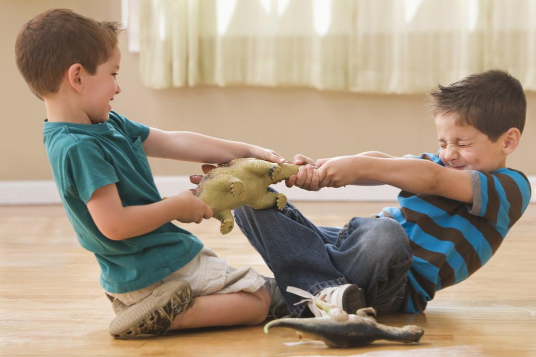 Про наших дошкольников конфликты и игры между братьями 1