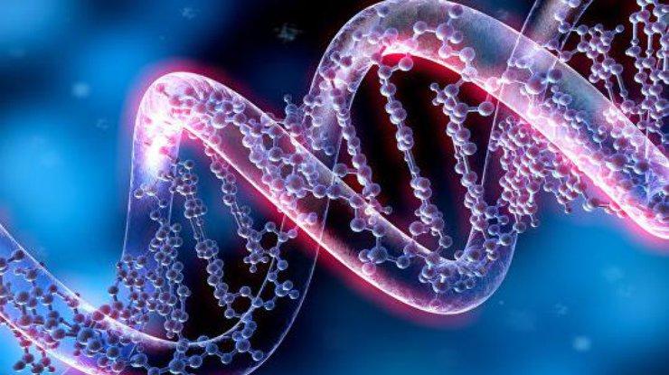 Генетический тест на национальность2